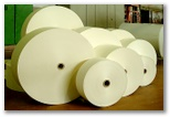 Paper Manufacturing and Converting